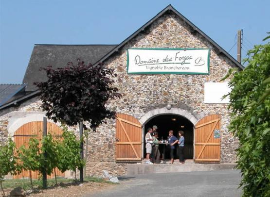 Domaine Forges 2