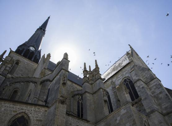 Pithiviers - Eglise