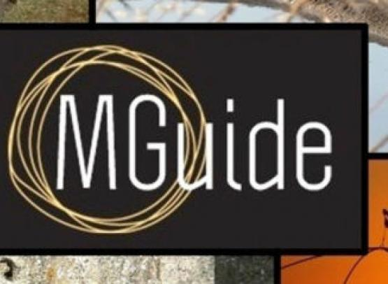 mguide-visites-guidees-le-croisic-1581174
