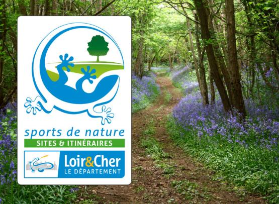 logo-tourisme-de-nature-sites-et-itineraires-chemin-forestier