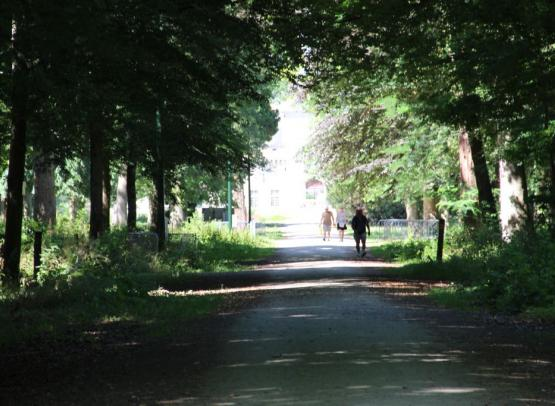 allee_chateau