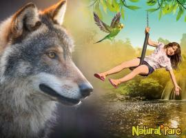 Tyroliennes-zoo-attractions-anjou-nantes