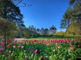 Tulipes-au-chateau-de-cheverny